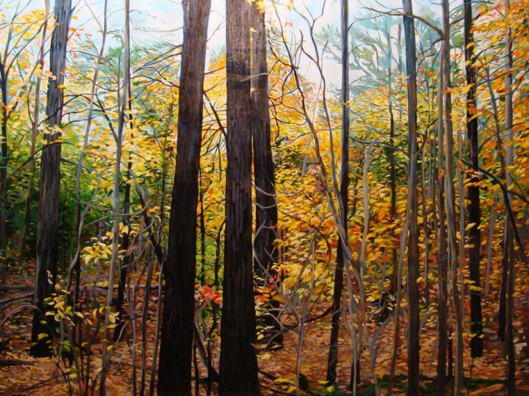 "Through Autumn's Tapestry – 36"" X 48"" <span class=""sold"">•"