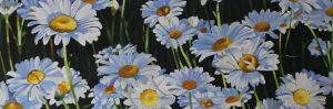 "Wild Ones: Spring Daisies – 12""x36""<span class=""sold"">•</span>"