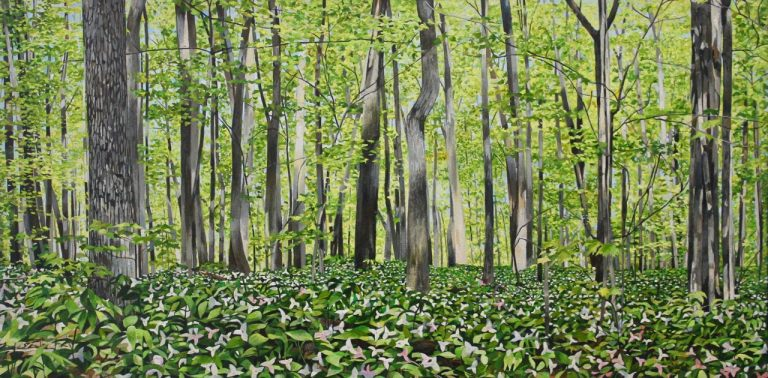 "Trilliums at Spring Bay 24""x48""<span class=""sold"">•</span>"