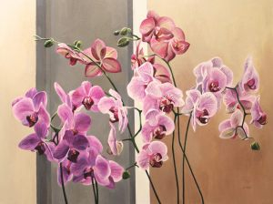 "Orchid Tango – 30""x40""<span class=""sold"">•</span>"